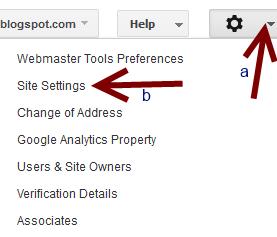 setting website preferences