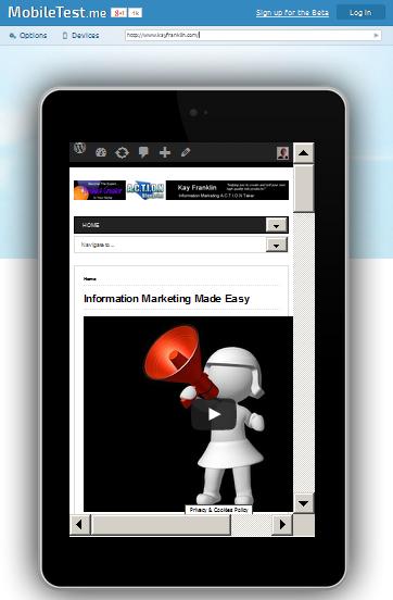 website view on Google Nexus