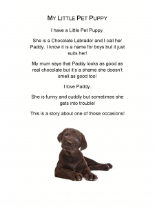 preview my little pets stories